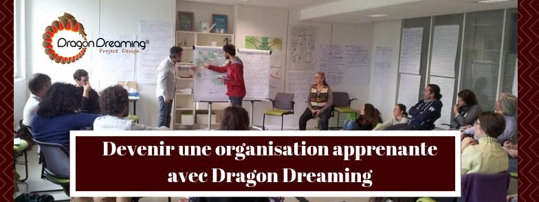 Devenir une organisation apprenante avec Dragon Dreaming